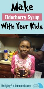 Make Elderberry Syrup with Your Kids STEM