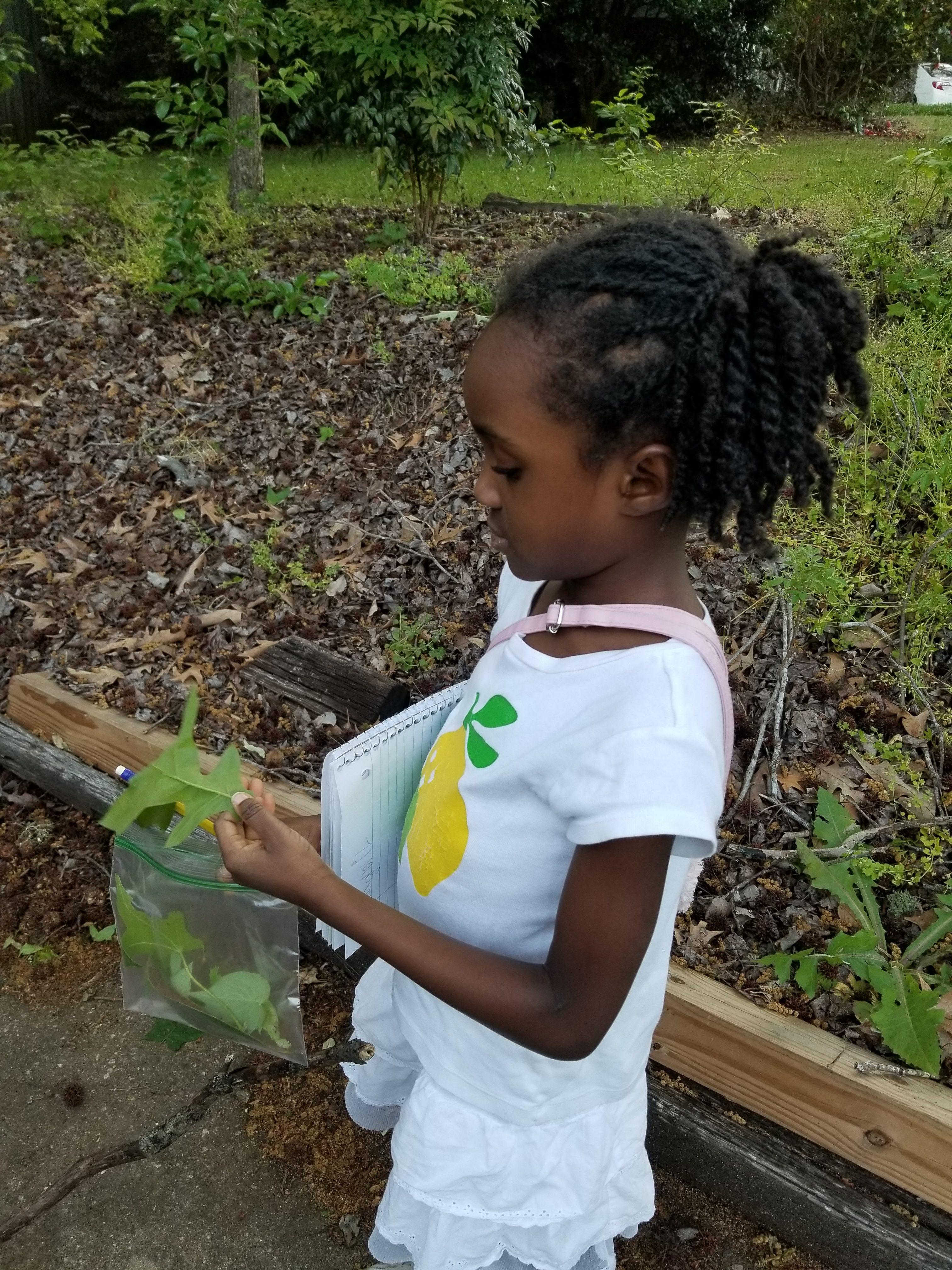 kids leaf collection